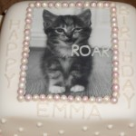 Cat lovers bday cake