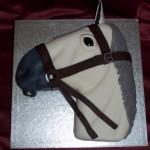 Horses Head Birthday Cake